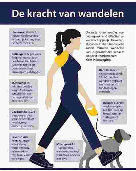 de kracht van wandelen.jpg